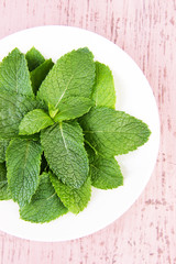 White round plate of fresh mint leaves on pink wooden