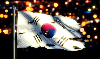 Korea National Flag Torn Burned War Freedom Night 3D