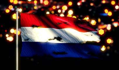 Netherland National Flag Torn Burned War Freedom Night 3D