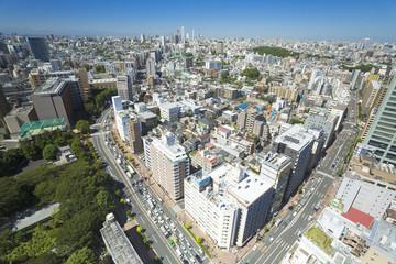 [東京都市風景] 春日町より池袋方面を見下ろす-029