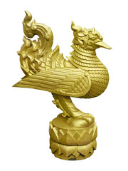 Thai golden swan