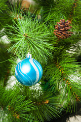 Christmas Decorations.  Christmas tree branch with a blue ball