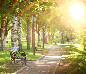 bench in a summer garden, the rays of the sun
