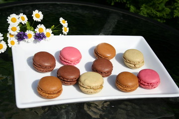 Macarons in different colors on white plate