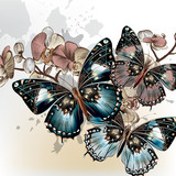 Fototapety Fashion vector background with butterflies