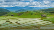 time lapse clouds floating over terrace rice farm and raining
