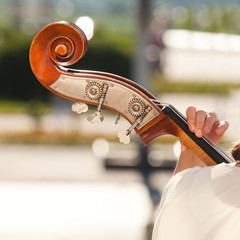 Detail of the fingerboard bass in the hands of a musician
