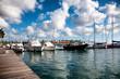Boats in a marine harbor in Oranjestad, Aruba