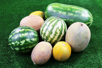 Melons and watermelons on green background