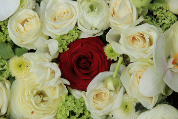 Red rose in white bridal bouquet