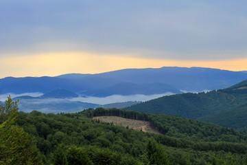 Morning in Carpathians