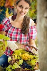 Beautiful woman in vineyard