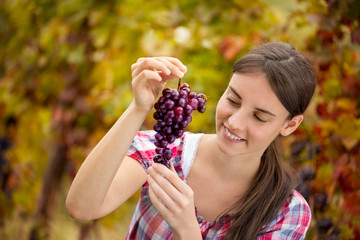 female vintner inspecting grapes