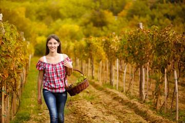 Woman walking  in vine rows