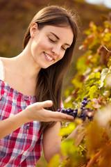 winemaker observing grapes