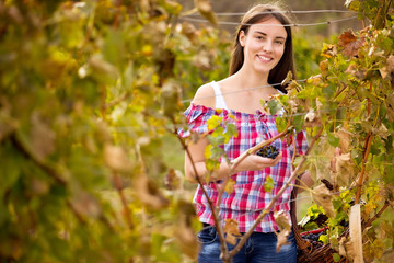 Smiling woman in vineyard
