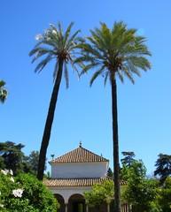Les jardins de l'Alcazar, Séville