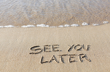 See you later written in the sand on the beach.