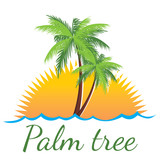 Fototapety palm tree