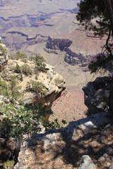 Parco nazionale del Gran Canyon  USA