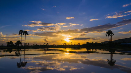 time lapse beautiful sunset and reflection in pond