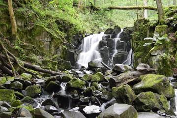 Wasserfall in der Rhön