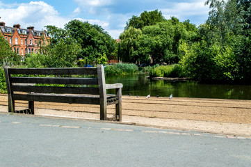 Park Bench, Barnes, London
