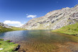 alghe in lago alpino