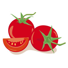 Tomatoes isolated Vector Illustration