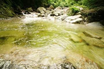 尾白川の清流