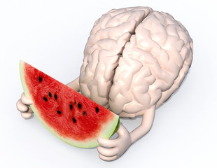 brain with arms and a watermelon slice on hands