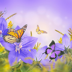 Bouquet of bells and butterfly, floral background