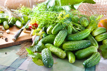 cucumbers on the table with spices