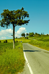 Country road in Tuscany, Italy