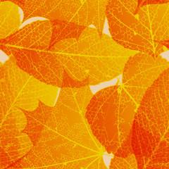 Seamless autumn leaves pattern. plus EPS10
