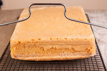 cutting cake sponge