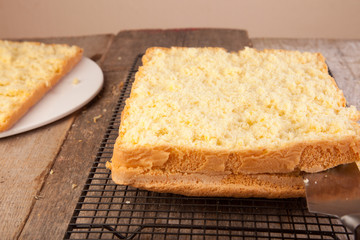 slicing cake sponge