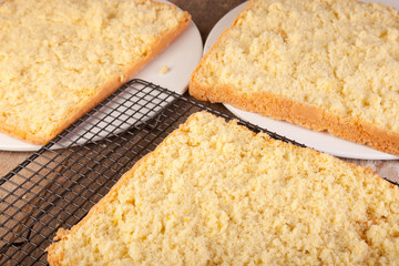 sliced cake sponge