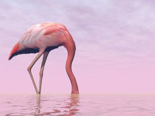 Flamingo hiding its head in water - 3D render