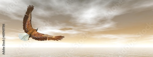 Bald eagle flying - 3D render - 68969786