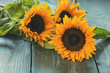 canvas print picture - Sunflowers on table