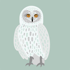 white owl decorative with big eyes isolated