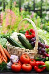 Variety of fresh organic vegetables in the garden