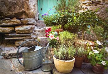 alter Hauseingang mit Blumentöpfen und Gießkanne