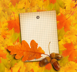 Old grunge paper with autumn oak leaves and acorns on the abstra