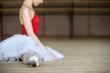 ballerina on tutu