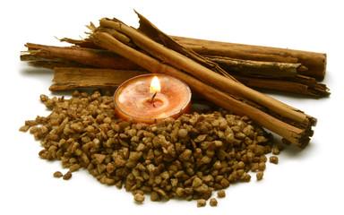 Cinnamomum verum Ceylon-Zimtbaum Cannelier de Ceylan