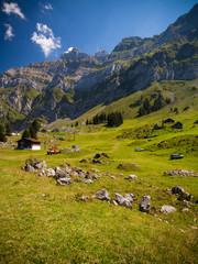 Schweizer Alpenlandschaft