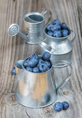 Blueberries in a metal tableware
