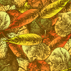 Seamless pattern with autumn leafs. Hand drawn illustration